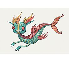 The Fish Dragon Photographic Print