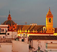 Roofs of Sevilla by Janis Möller