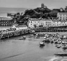 Toy Harbour Tenby by outlawalien