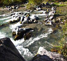Alcantara Rapids by Francis Drake