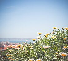 Lisbon Flowers by Mylla Ghdv