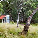 Millers Hut, Alpine National Park, Victoria, Australia by Michael Boniwell