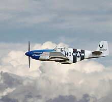 P51 Mustang Gallery - No2 by warbirds