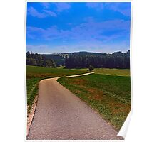 Yet another boring hiking trail picture | landscape photography Poster