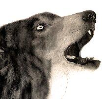 Wolf by Darrel Leigh