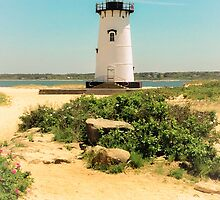 Edgartown Lighthouse, Martha's Vineyard by Elizabeth Thomas