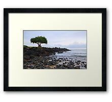 It's lonely at the top Framed Print