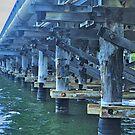 LOWER KALGAN RIVER BRIDGE by Margaret Stevens