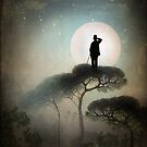 The Man in the Moon by Catrin Welz-Stein