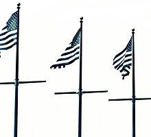 Allegiance by bostonrache