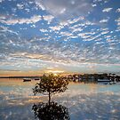 Just Like Glass - Victoria Point Qld Australia by Beth  Wode