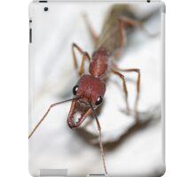Ant iPad Case/Skin