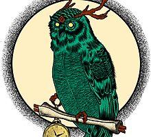 Eccentric Owl by subatlas