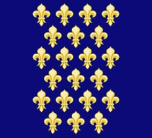 Fleur de lys;  fleurs-de-lis, French heraldry pattern, Knights by TOM HILL - Designer