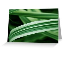 Spearmint Highway Greeting Card