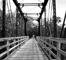 Wood and Metal Bridge 2 by Emily Rose