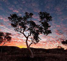 Pilbara  Sunset by Robert Armitage