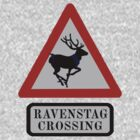 Ravenstag crossing by woodian
