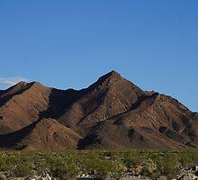 Mojave by Loisb