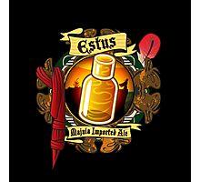 Estus Majula Imported Ale (Dark Souls 2) Photographic Print