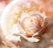 Rose - Colors Of The Moon by Carol  Cavalaris