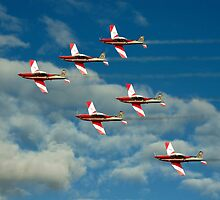 Roulettes in Motion by Steven  Agius