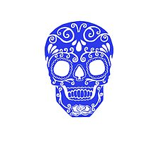 blue skull with transparent markings on face by Seymour  Art