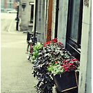 Old City Montreal 1 by Melinda  Ison - Poor