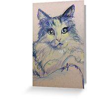 Pop Cat Series 01 Greeting Card