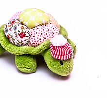 Toy Tortoise by CambrayPhoto