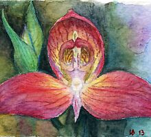 Disa Uniflora Orchid watercolor pencils by IrVia