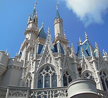 Cinderella Castle by bricoxox