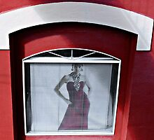 Window Dresser © by Ethna Gillespie