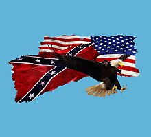 Confederate Flag, US Flag, Bald Eagle,Patriotic by Val  Brackenridge