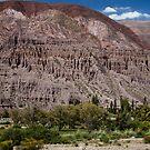 Salta Landscape by DianaC