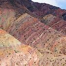 Salta Landscape IV by DianaC