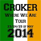 One Direction Dublin Concerts by May92