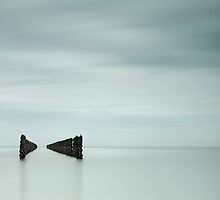 Mussel Posts by Gary Stringfellow by jerseygallery