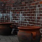 Two Large Pots by PicsbyJody
