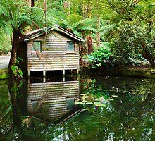 Boathouse, Alfred Nicholas Gardens, Melbourne, Victoria, Australia by Michael Boniwell