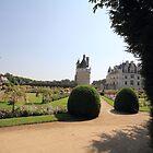 Château de Chenonceau by BBCsImagery