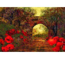 Ye olde railway bridge'... Photographic Print