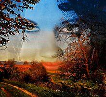 。◕‿◕。 FALL -A FACE OF VISION-THROW PILLOW。◕‿◕。  by ╰⊰✿ℒᵒᶹᵉ Bonita✿⊱╮ Lalonde✿⊱╮