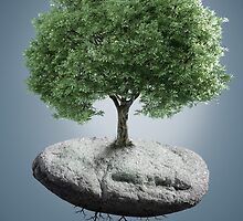 Tree on suspended rock by jordygraph