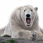 Singing bear by TheaDaams