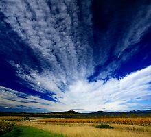 freycinet autumn. eastcoast tasmania, australia by tim buckley   bodhiimages
