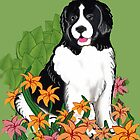 Landseer Newfoundland and Lilies by IowaArtist