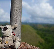 Boofle in Bohol by darsie84
