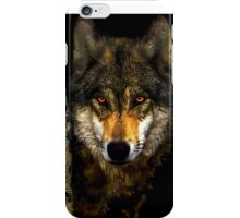 Wolf from Kaibab Forest in Arizona iPhone Case/Skin