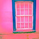 Pink Window by Judi FitzPatrick